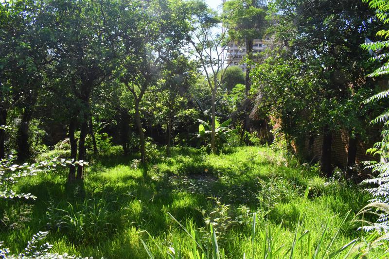 Foto Terreno en Venta en  Ycua Sati,  Santisima Trinidad  Zona Ycua Sati