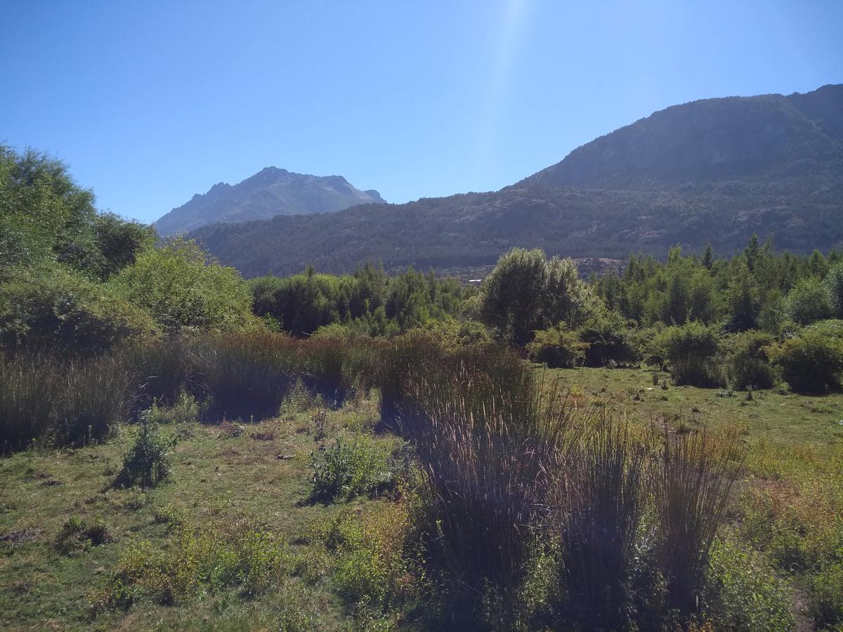 Foto Campo en Venta en  Ruta 40,  El Hoyo  Ruta Nacional 40, El Hoyo