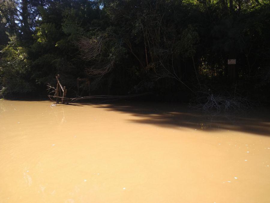 Foto Terreno en Venta en  Banco,  Zona Delta Tigre  Arroyo Banco 3 Lotes