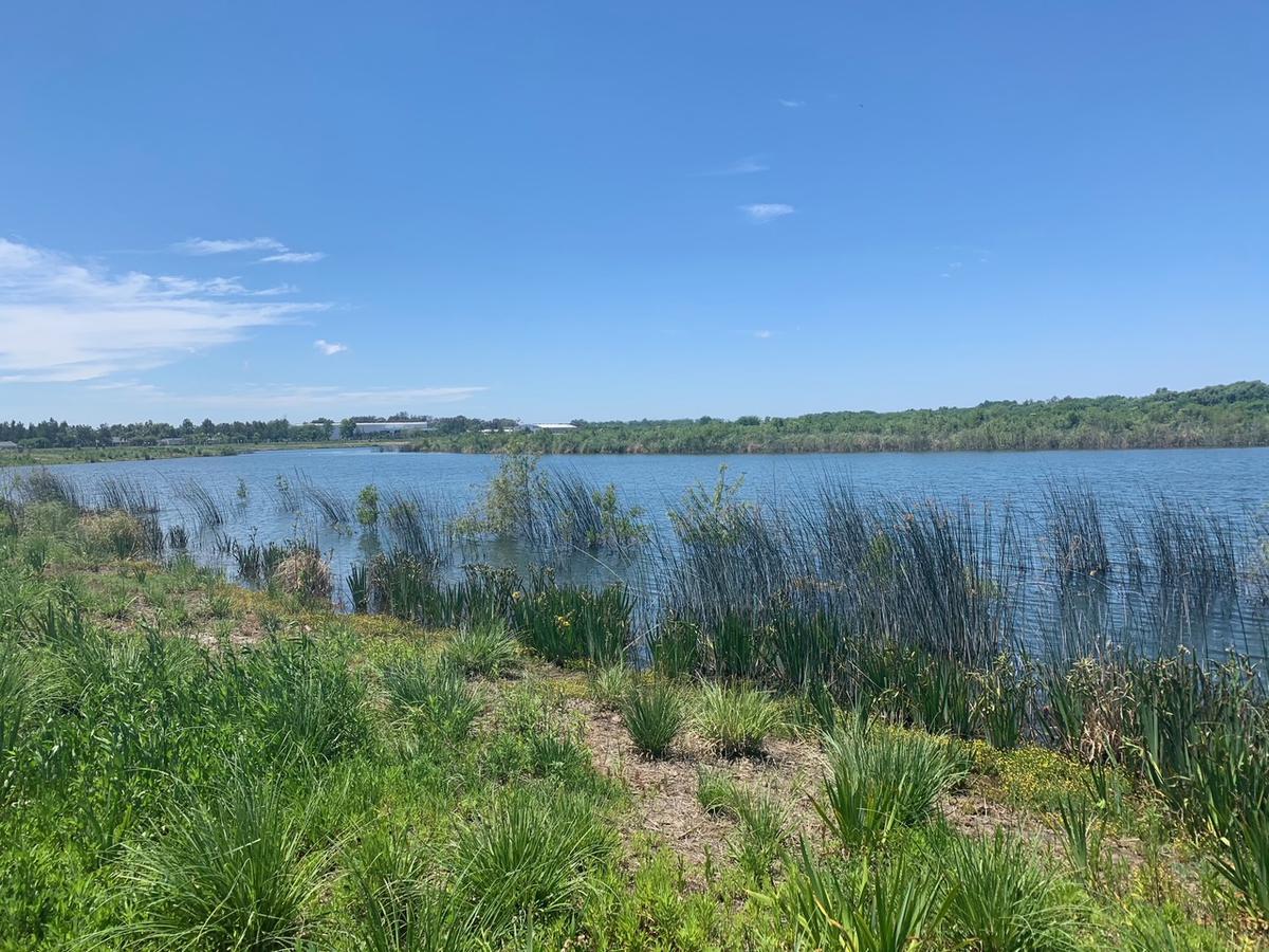Foto Terreno en Venta en  Santa Ana,  Villanueva  Lote a la laguna en Santa Ana Villanueva