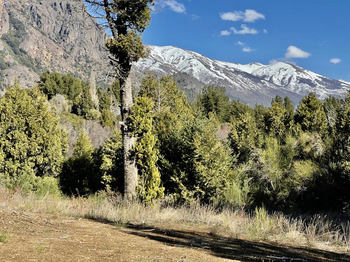 Foto Terreno en Venta |  en  Arelauquen,  Bariloche  Arelauquen
