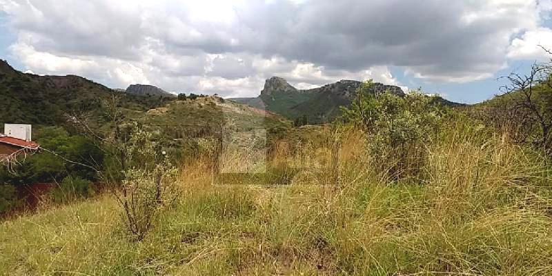 Foto Terreno en Venta en  Hacienda Puentecillas,  Guanajuato  al 36200