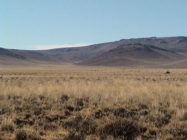 Foto Campo en Venta en  Tecka,  Languiñeo  Ruta Nacional 40