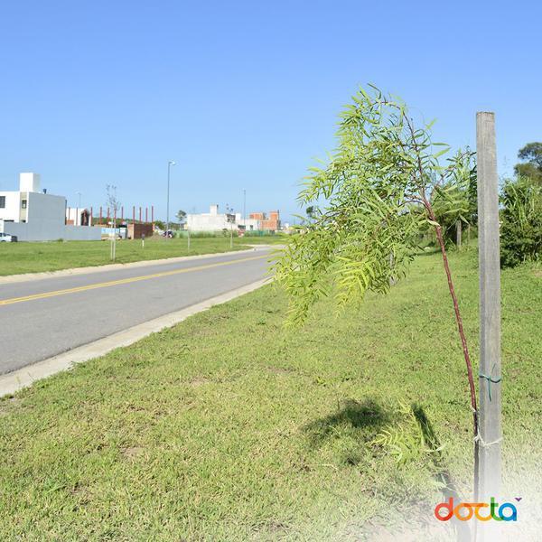 Foto Terreno en Venta en  Countries/B.Cerrado (Cordoba),  Cordoba Capital  Docta Avenida- Lote Av. Circunvalación y Fuerza Aérea