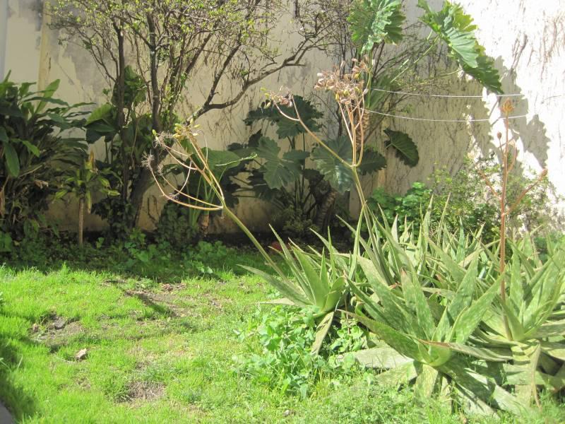 Foto PH en Venta en  Villa del Parque ,  Capital Federal  CAMPANA al 2700