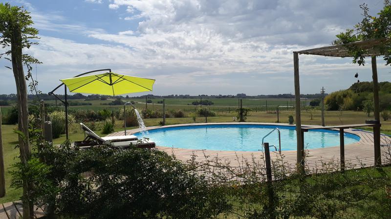 Foto Chacra en Venta en  Colonia del Sacramento ,  Colonia  Chacra con piscina y variedad de arboles