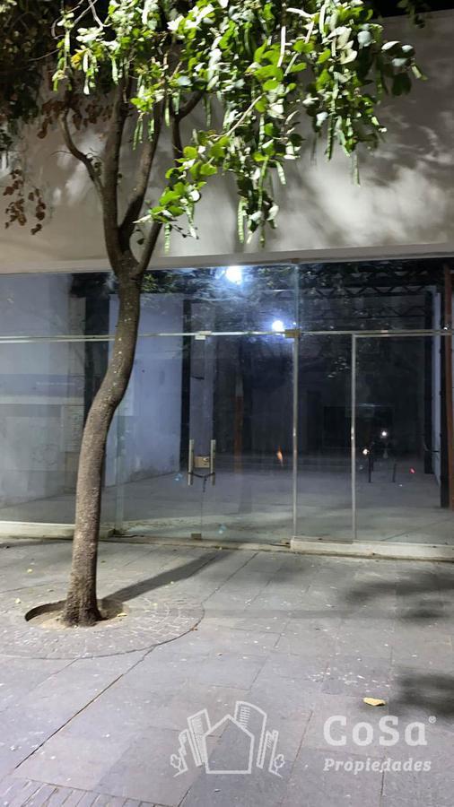 Foto Local en Venta en  Centro,  Rosario  Córdoba 800