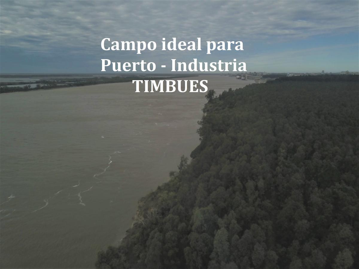 Foto Campo en Venta en  Timbues,  Rosario          ROSARIO-TIMBUES-PUERTO