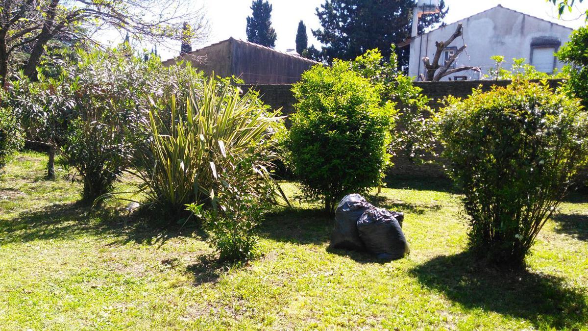 Foto Quinta en Venta en  Monte Grande,  Esteban Echeverria  Gral Alvear al 1400