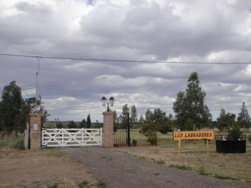 Foto Campo en Venta en  Biedma ,  Chubut  RUTA PROVINCIAL 1 20
