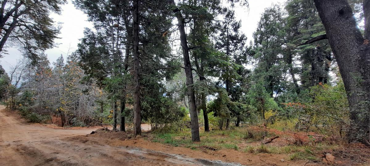 Foto Terreno en Venta en  Parque El Faldeo,  San Carlos De Bariloche  Calle Ona