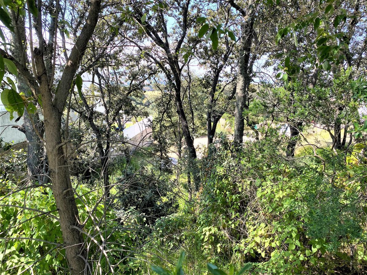 Foto Terreno en Venta en  Rancho San Juan,  Atizapán de Zaragoza  Alamos Mz. 8 LT. 3