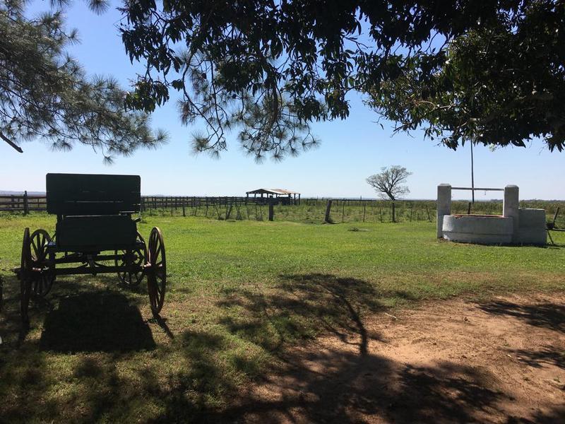 Foto Campo en Venta en  Paraguarí,  Paraguarí  Mbuyapey - Paraguari