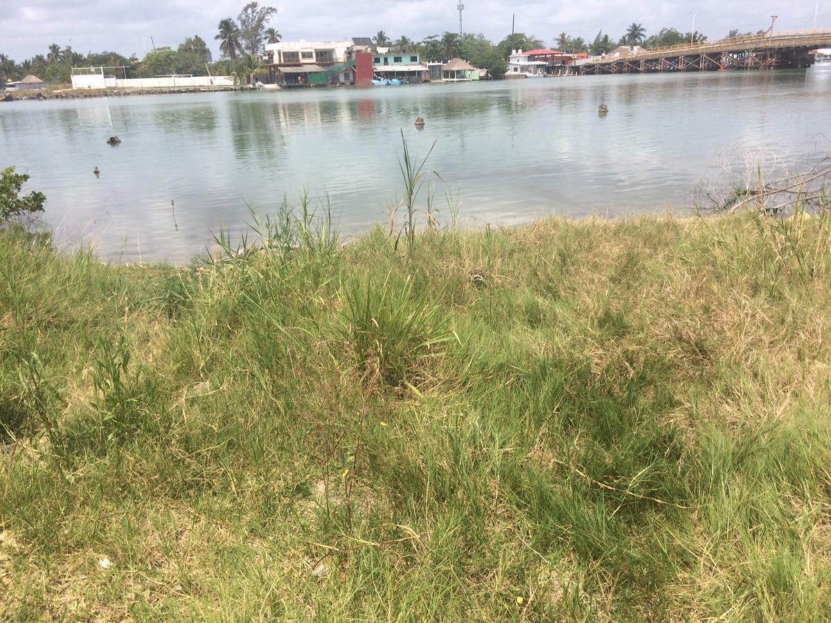 Foto Terreno en Venta en  Congregacion La Barra Norte,  Tuxpan  TERRENO FRENTE A LA LAGUNA DE TAMPAMACHOCO
