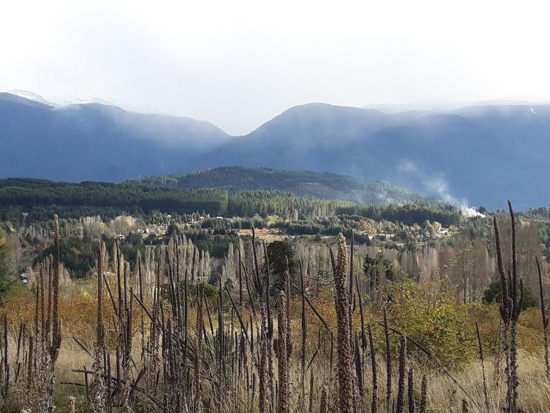 Foto Terreno en Venta en  Las Golondrinas,  Cushamen  RR3613