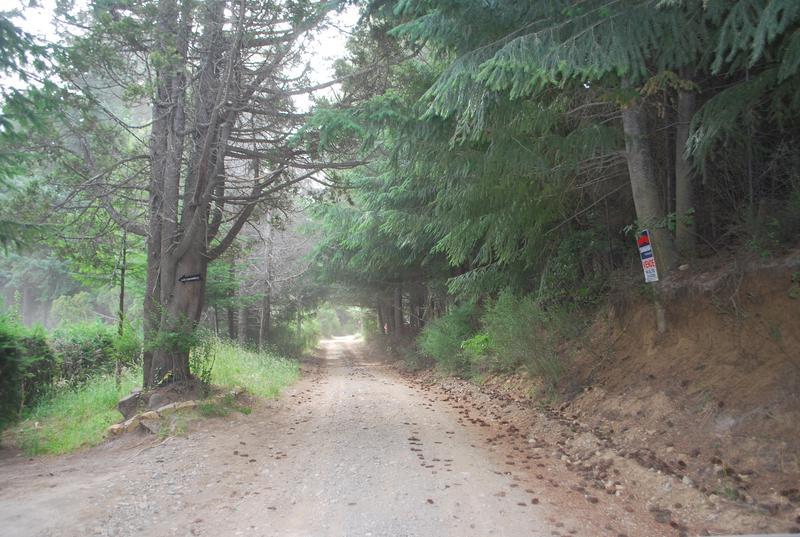 Foto Terreno en Venta en  Bariloche ,  Rio Negro  Av. Bustillo km 20