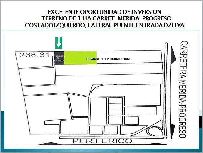 Foto Terreno en Renta en  Pueblo Dzitya,  Mérida  En venta 1 ha. ideal para negocio con almacenaje