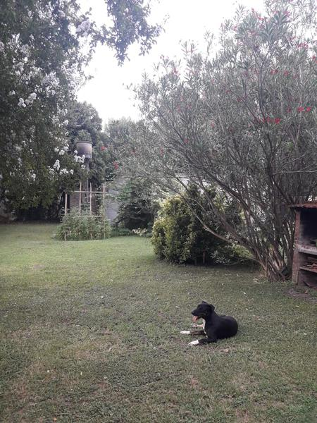 Foto Casa en Venta en  Open Door,  Lujan  Filiberto 1415