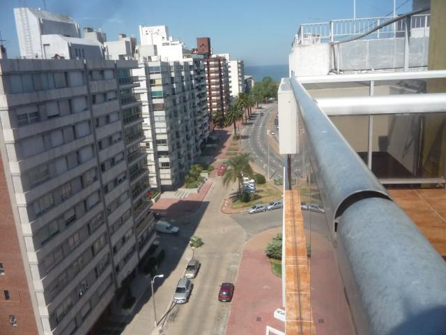 Foto Oficina en Venta en  Puerto Buceo ,  Montevideo  Prox Puertito del Buceo ,vista al mar y gran terraza !!!