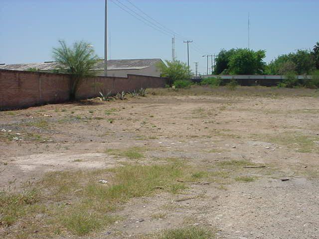 Foto Terreno en Renta en  Prolongación Longoria (Ampliación),  Reynosa  Prolongación Longoria (Ampliación)