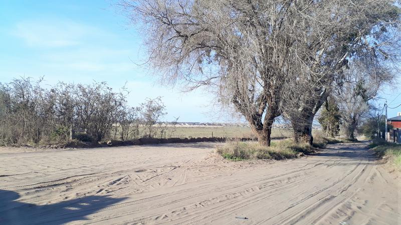 Foto Terreno en Venta en  Villa Amalia,  Santa Rosa  GRASSI