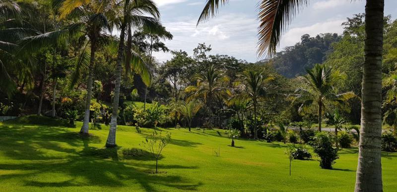 Foto Quinta en Venta en  Sayulita,  Bahía de Banderas  RANCHO LAS PALMAS