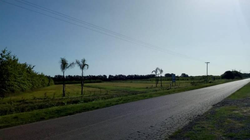 Foto Terreno en Venta en  San Pedro,  San Pedro  Lucio Mansilla 6000