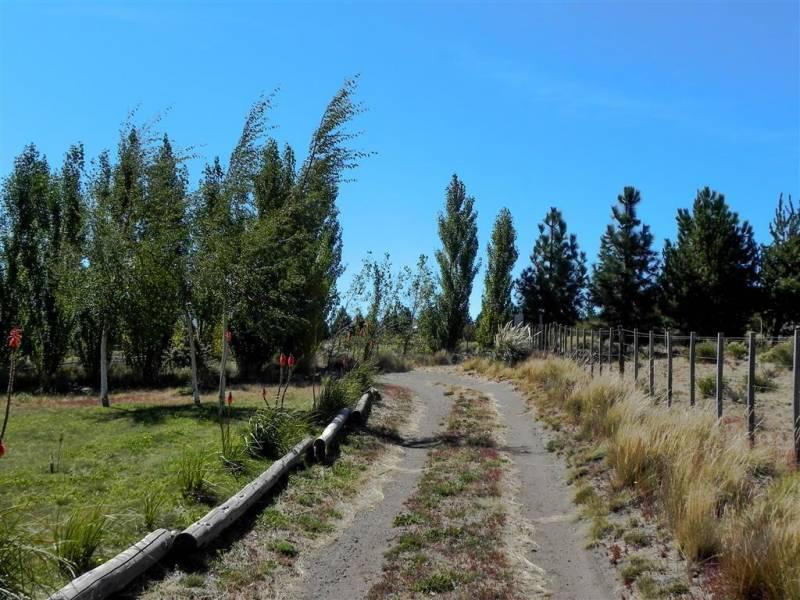 Foto Campo en Venta en  Capital Federal ,  Capital Federal  Los Calafates 1000