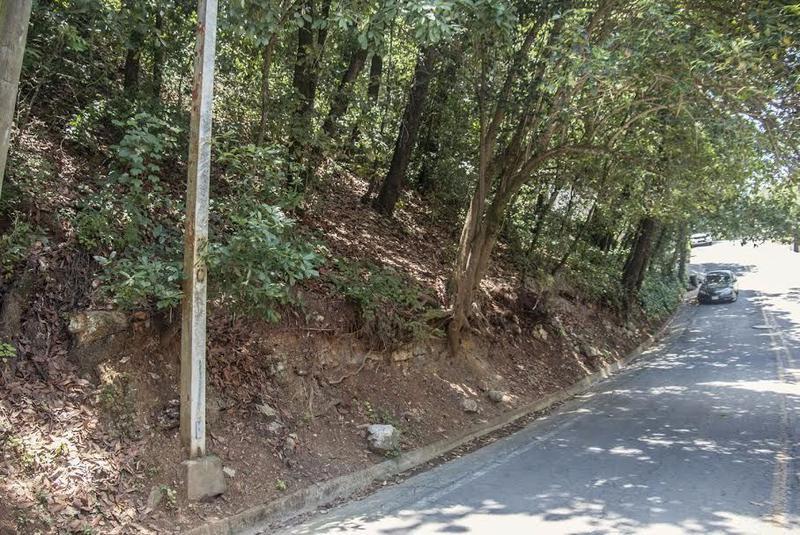 Foto Terreno en Venta en  Bosques de San Angel Sector Palmillas,  San Pedro Garza Garcia  TERRENO VENTA PALMILLAS SAN PEDRO