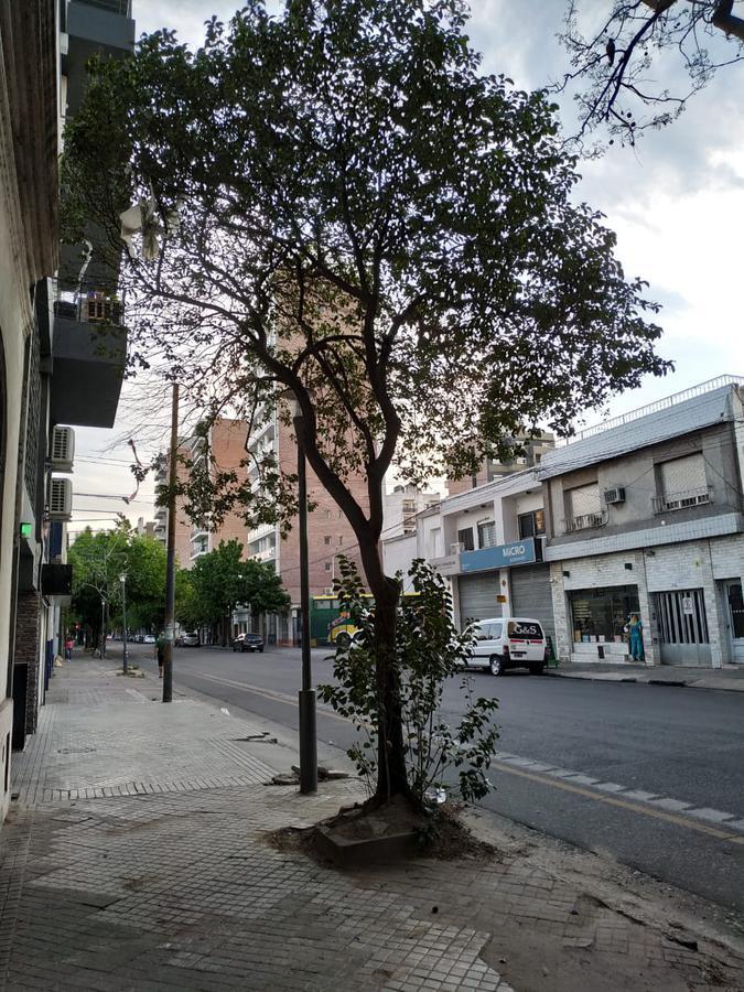 Foto Terreno en Venta en  Rosario ,  Santa Fe  Cafferata al 900