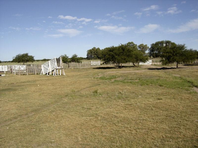 Foto Campo en Venta en  Utracan,  Utracan  Ruta Prov. 11 (Utracán)