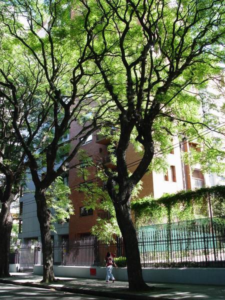 Foto Departamento en Venta en  Belgrano ,  Capital Federal  11 de Septiembre 1300
