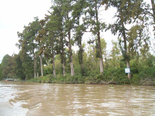 Foto Quinta en Venta en  Paraná Miní,  Zona Delta San Fernando  Paraná Miní