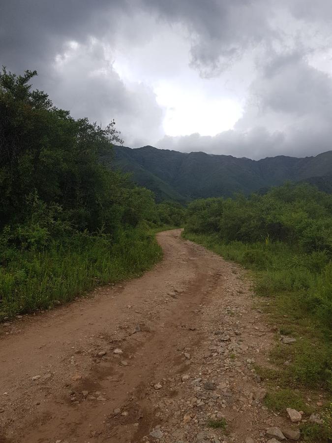 Foto Terreno en Venta en  Cerro de Oro,  Merlo  VENDO EXCLUSIVO TERRENO DE 2500 MTRS2 CERRO DE ORO MERLO SAN LUIS