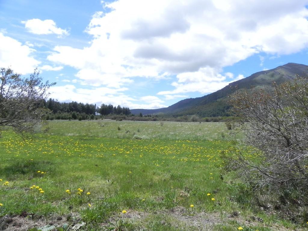 Foto Terreno en Venta en  Bariloche ,  Rio Negro  Bo. Cerrado Dos Valles