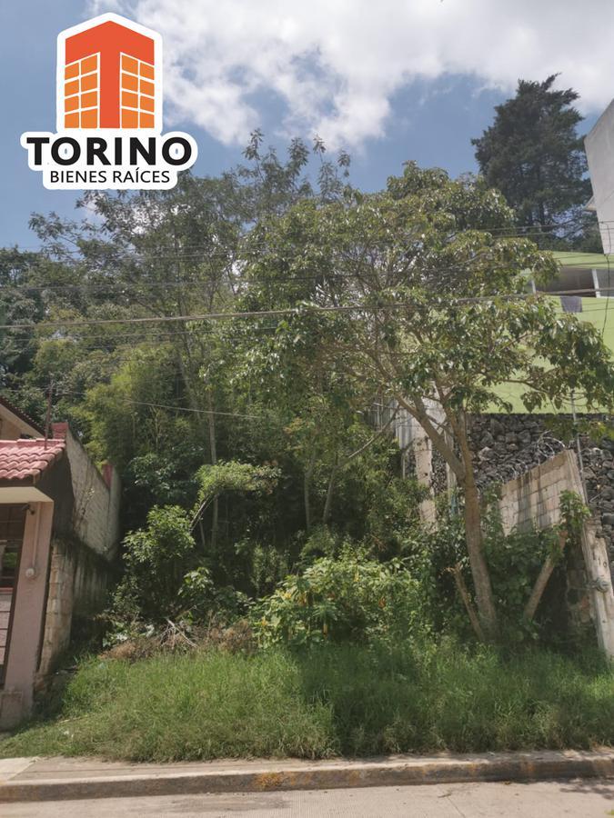 Foto Terreno en Venta en  Xalapa ,  Veracruz  TERRENO COL. MARTIRES DE CHICAGO 304M2