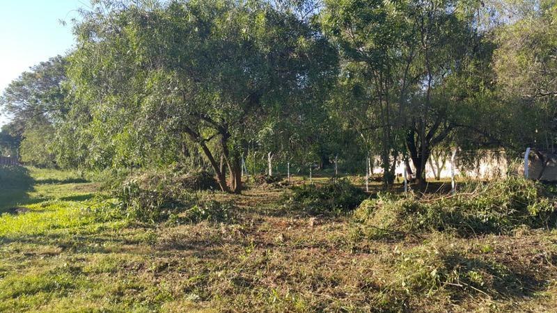 Foto Terreno en Venta en  Villa Adela,  Luque  Zona Boulevard Confederación