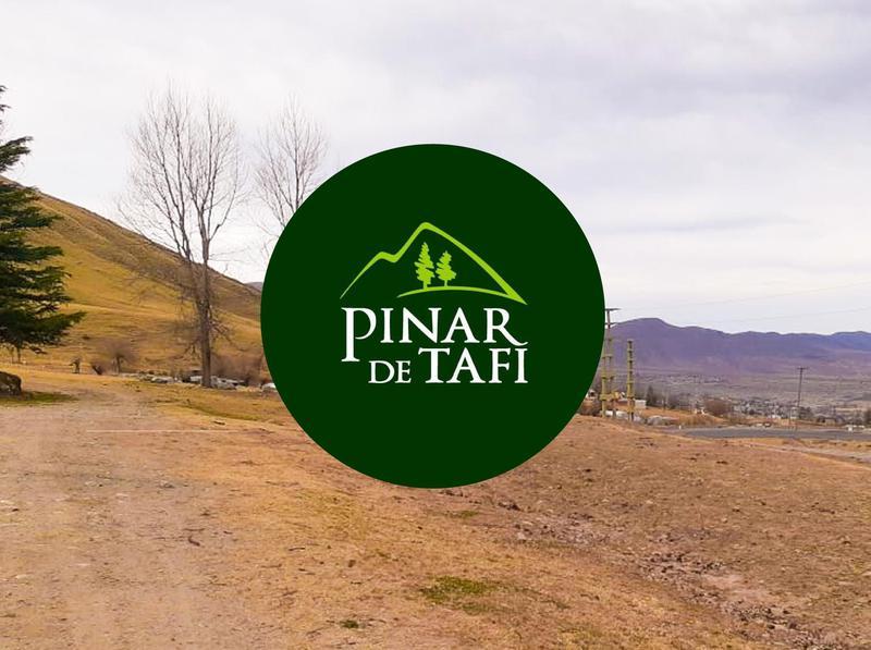 Foto Terreno en Venta en  Tafi Del Valle ,  Tucumán  El Pinar de Tafí