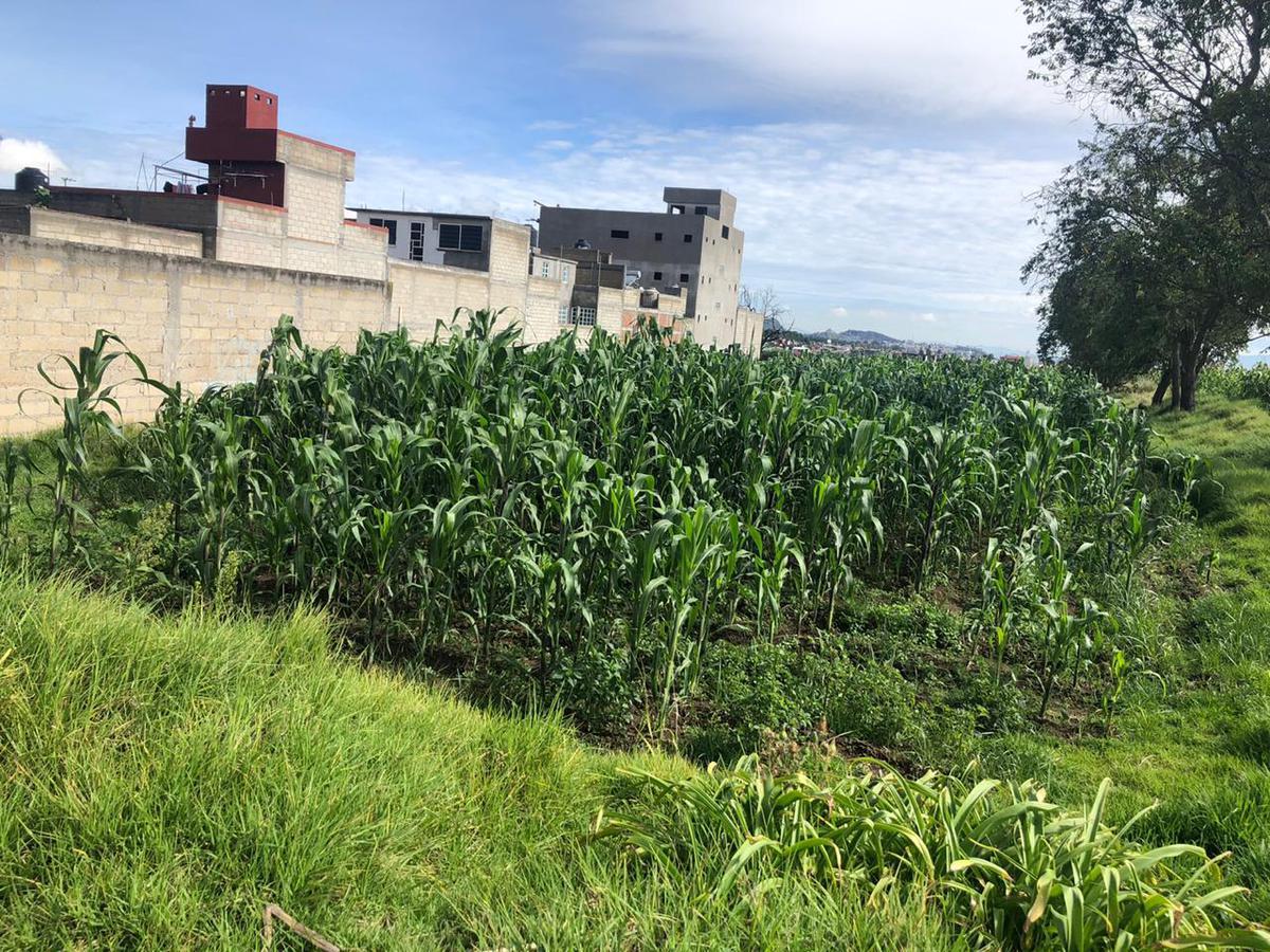 Foto Terreno en Venta en  San Felipe Tlalmimilolpan,  Toluca  TERRENO EN VENTA
