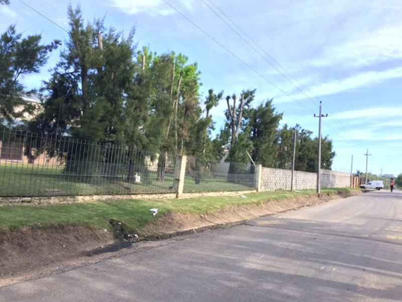 Foto Local en Venta | Alquiler en  Carrasco Norte ,  Montevideo         2500m2  LOCAL INDUSTRIAL/DEPÓSITOS/ INVERSIONISTA  MONTEVIDEO