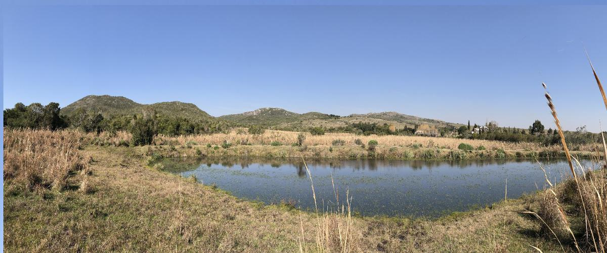 Foto Chacra en Venta en  Punta del Este ,  Maldonado  Oportunidad, chacra de 5 hectáreas desde usd 45.000