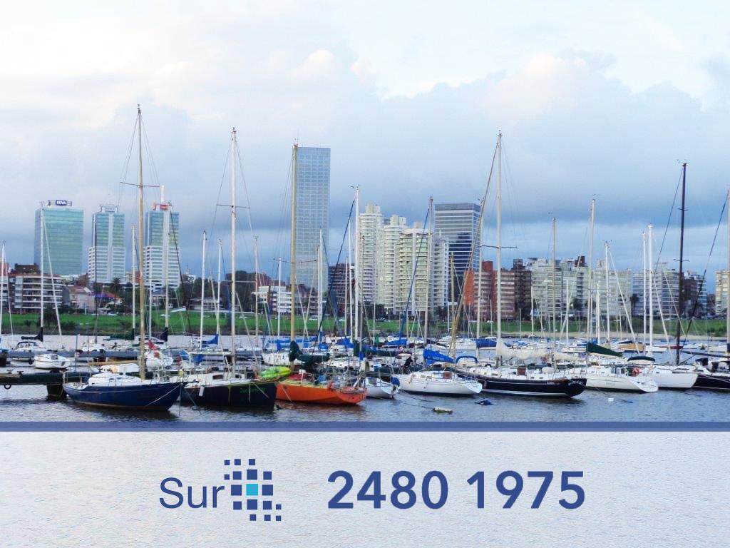 Foto Departamento en Alquiler en  Puerto Buceo ,  Montevideo  RIZAL Y PEDRO BUSTAMANTE