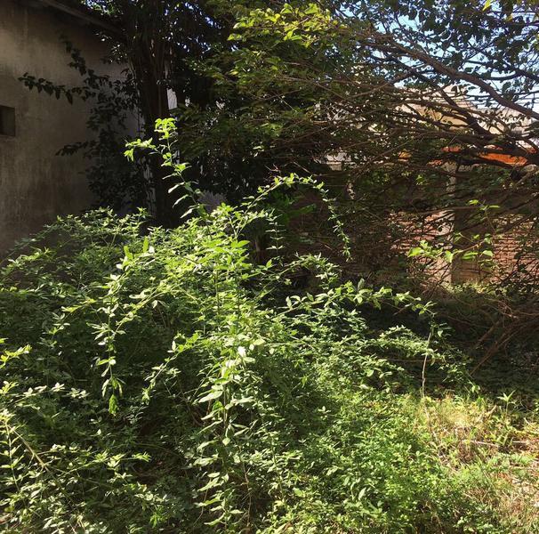 Foto PH en Venta en  Lomas Del Mirador,  La Matanza  Venta tipo casa a terminar sobre lote de 17,32 x 20,15, con local y garage, Alte. Brown al 3400,Lomas del Mirador, planos aprobados.