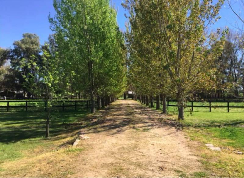 Foto Campo en Venta en  Pilar,  Pilar  Campo Santa Clara, Ruta 28 km 68