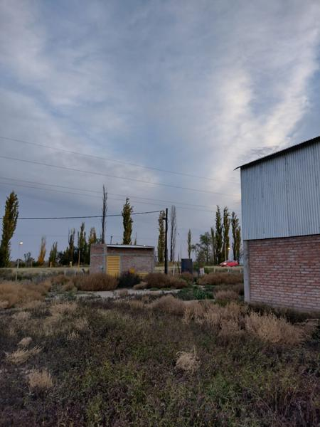 Foto Campo en Venta en  Bowen,  General Alvear  Ruta al 100