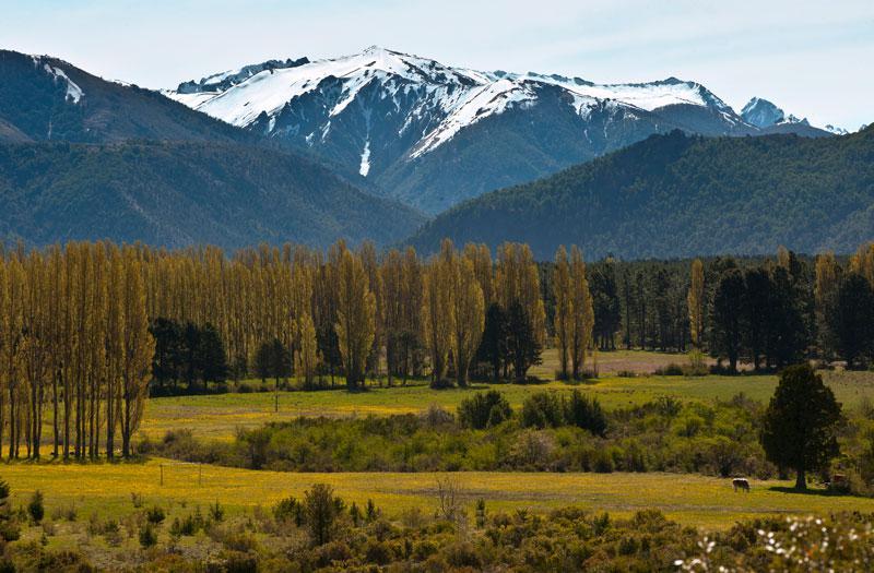 Foto Terreno en Venta en  Bariloche ,  Rio Negro  Dos Valles Lote C9