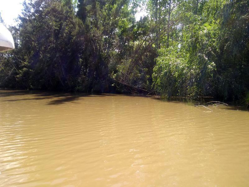 Foto Quinta en Venta en  Carapachay,  Zona Delta Tigre  Rio Carapachay KM 10 Parcela 4