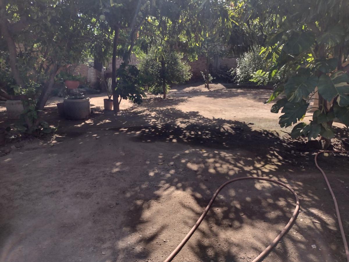 Foto Casa en Venta en  Centro,  Guasave  PROPIEDAD EN VENTA CALLE GABRIEL LEYVA  633 M2, ENTRE MADERO Y NORZAGARAY, CERCA DE LEY MADERO, GUASAVE