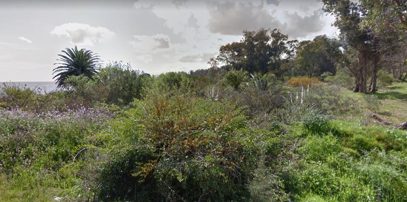 Foto Terreno en Venta en  Pajas Blancas ,  Montevideo  Sobre la costa, eucaliptus y palmeras, inversores