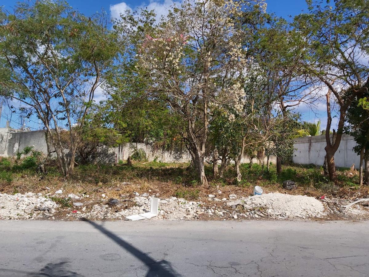 Foto Terreno en Venta en  Cozumel ,  Quintana Roo  Terreno Flores Magón, Fracción 1 - Calle Adolfo Rosado Salas esq con 80 Av